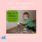 Egg in a Bottle Experiment