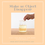Make Objects Disappear